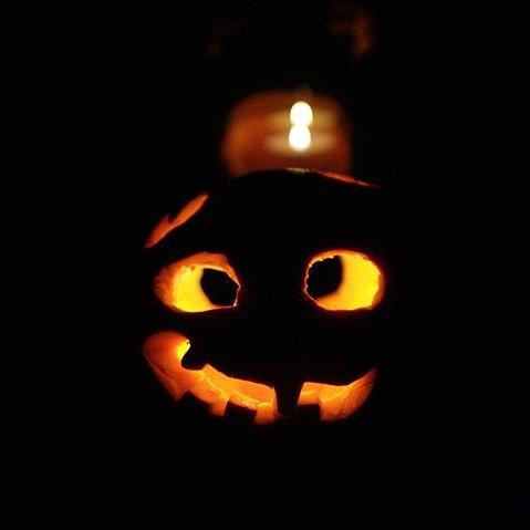 dynia na halloween, fot. M. Mazurowski