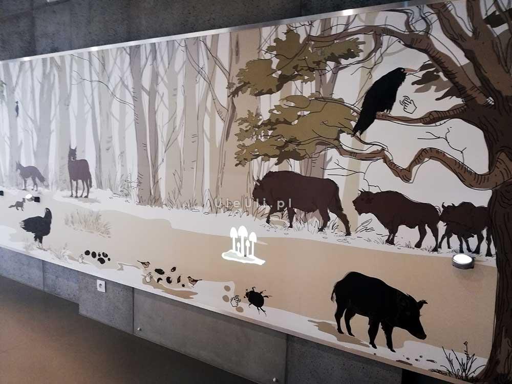 Białowieża, zagroda, żubry, tarpany, dziki, rysie, wilki,